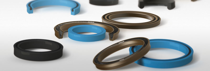 Hydraulic symmetrical piston/rod seals